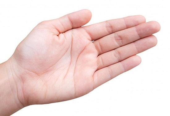 3 đường chỉ tay có ý nghĩa như thế nào trong cuộc đời bạn?