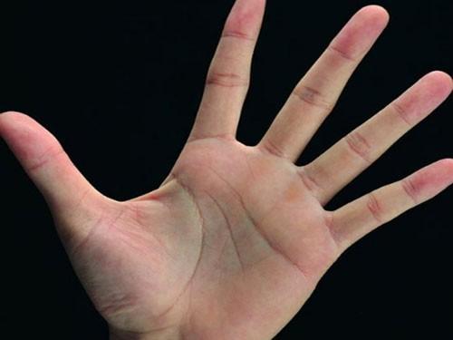 Ý nghĩa 3 đường chỉ tay trong cuộc đời mỗi người