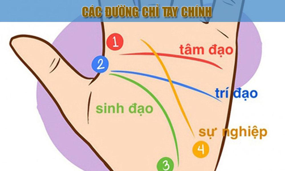 bi-an-dang-sau-nguoi-so-huu-duong-chi-tay-hinh-chu-nhat-h1