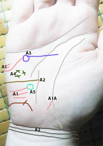 Cách xem đường chỉ tay xuất ngoại