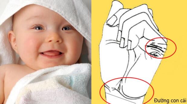 Đường chỉ tay con cái